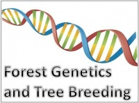forest geentics and tree breeding OK
